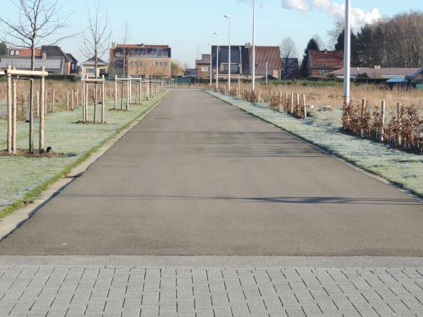 Verkaveling Rodenbach te Diepenbeek